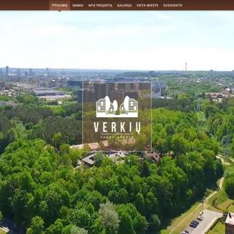 Interneto svetainių kūrimas Vilniuje / Martynas Paliulis / Darbų pavyzdys ID 288357