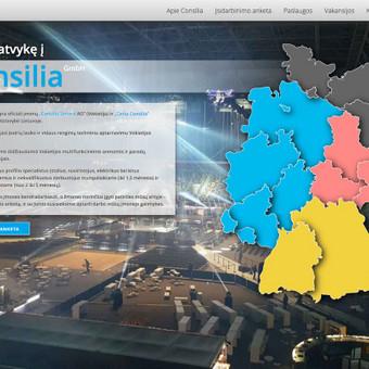 Interneto svetainių kūrimas Vilniuje / Martynas Paliulis / Darbų pavyzdys ID 288397