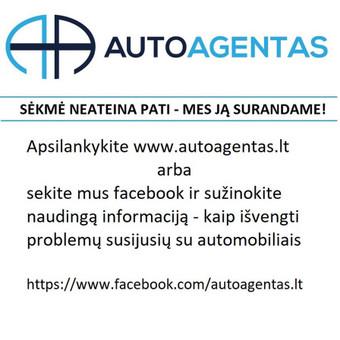 Jūsų asmeninis automobilio agentas / Marius Kuckailis / Darbų pavyzdys ID 289511