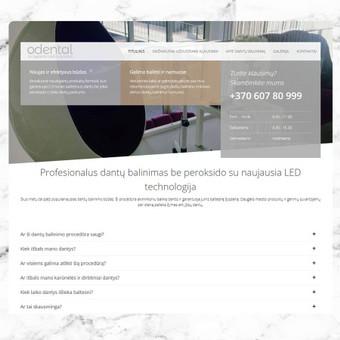 Internetinių svetainių kūrimas Vilniuje / Lauras Pranckevicius / Darbų pavyzdys ID 290793