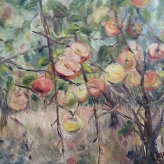 ANTRA OBUOLIO PUSĖ. Drobė, aliejus. Paveikslus galima įsigyi iš dailininkės asmeninės kolekcijos.