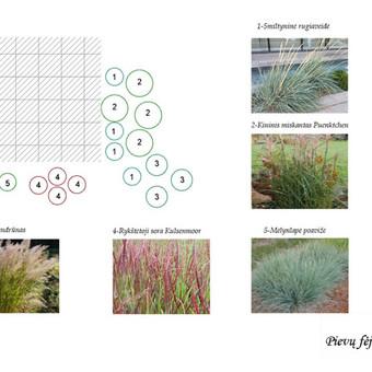 Aplinkos apželdinimo projektavimas / Rolanda / Darbų pavyzdys ID 291279