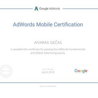 Sertifikuota Google Adwords, FB Reklama / Aivaras / Darbų pavyzdys ID 298895