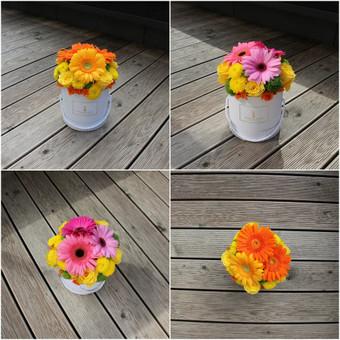 Memelio gėlės / Silvija / Darbų pavyzdys ID 299193