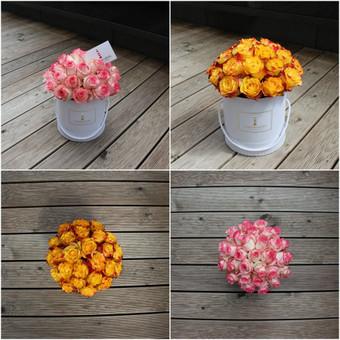 Memelio gėlės / Silvija / Darbų pavyzdys ID 299197