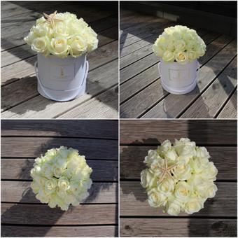Memelio gėlės / Silvija / Darbų pavyzdys ID 299199