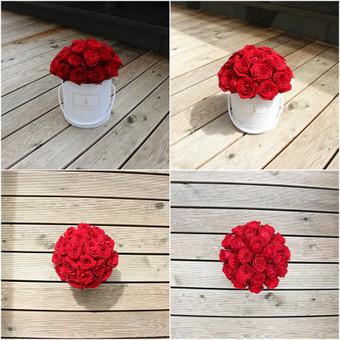 Memelio gėlės / Silvija / Darbų pavyzdys ID 299203