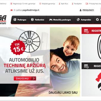 Programuotojas Kaune / Ričardas / Darbų pavyzdys ID 300125