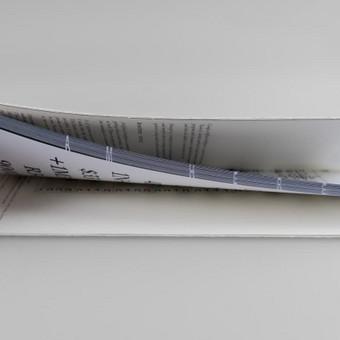 Grafikos dizaineris / Rūta Kygaitė / Darbų pavyzdys ID 302709