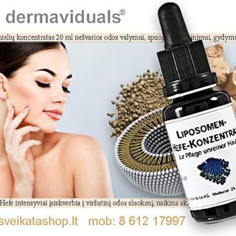 Hyalurono liposomų Plus koncentratas / Alla Nekrasova / Darbų pavyzdys ID 306439