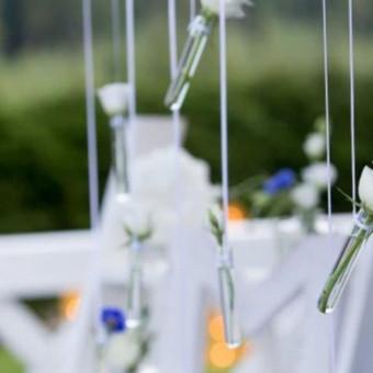 Vestuvių ir visų švenčių dekoravimas / Baltos rasos / Darbų pavyzdys ID 309347