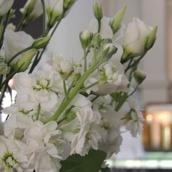 Vestuvių ir visų švenčių dekoravimas / Baltos rasos / Darbų pavyzdys ID 309379