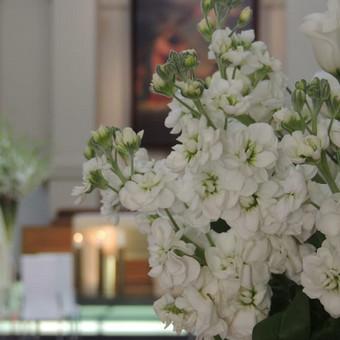 Vestuvių ir visų švenčių dekoravimas / Baltos rasos / Darbų pavyzdys ID 309381