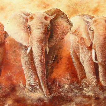 Dramblių safaris 150x65, al./drobė.