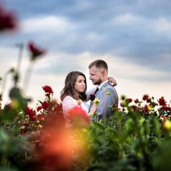 Vestuvių ir visų švenčių dekoravimas / Baltos rasos / Darbų pavyzdys ID 310929