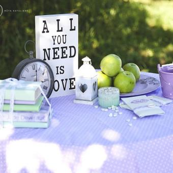 Vestuvių ir visų švenčių dekoravimas / Baltos rasos / Darbų pavyzdys ID 310991