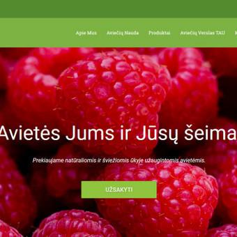 Sukurtas reprezentacinis puslapis, pritaikytas prie WordPress TVS, sukurta mobilioji svetainės versija.