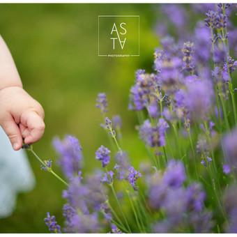 Fotografavimo paslaugos / Asta Laužikaitė-Pralgauskienė / Darbų pavyzdys ID 320765