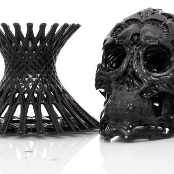 3D spausdinimas Kaune ir Lietuvoje / Tomas / Darbų pavyzdys ID 322407
