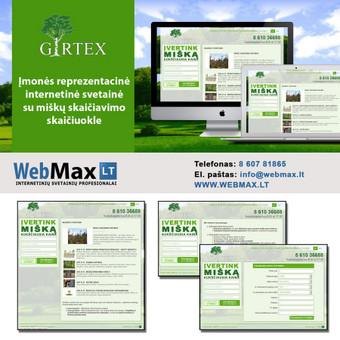 Internetinių projektų kūrimas / Mantas / Darbų pavyzdys ID 322723