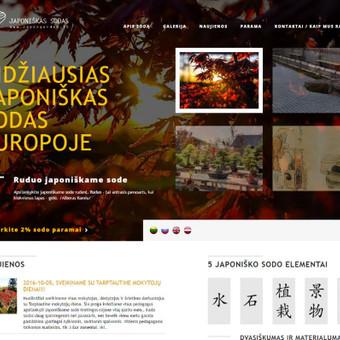Interneto svetainių kūrimas, priežiūra ir palaikymas / Mindaugas Daraškevičius / Darbų pavyzdys ID 324891