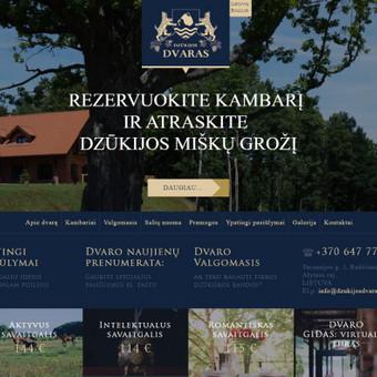 Interneto svetainių kūrimas, priežiūra ir palaikymas / Mindaugas Daraškevičius / Darbų pavyzdys ID 324895