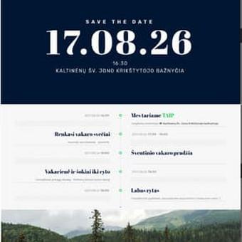 Internetinis vestuvių puslapis <3 / Edita Macikaitė / Darbų pavyzdys ID 338839