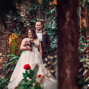 Noriu ištekėti / Iveta Oželytė / Darbų pavyzdys ID 339085