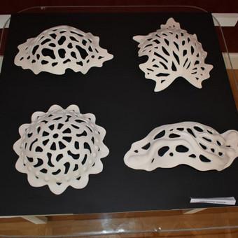 Keramikė / Aura Kurienė / Darbų pavyzdys ID 341711
