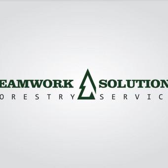 Svetainių kūrimas, priežiūra, reklama / Svetainių kūrimas, priežiūra, reklama / Darbų pavyzdys ID 348895
