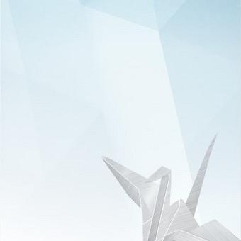 Grafikos dizainerė / Asta Laužikaitė-Pralgauskienė / Darbų pavyzdys ID 349305