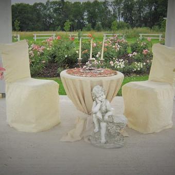 Noriu ištekėti / Iveta Oželytė / Darbų pavyzdys ID 353629