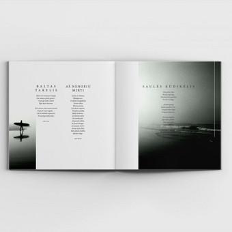 Grafikos dizaineris / Mindaugas Žitkus / Darbų pavyzdys ID 353977