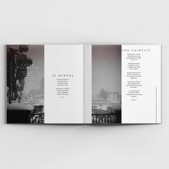 Grafikos dizaineris / Mindaugas Žitkus / Darbų pavyzdys ID 353979