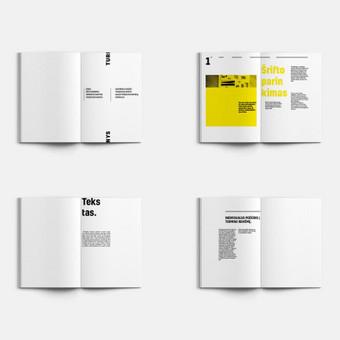 Grafikos dizaineris / Mindaugas Žitkus / Darbų pavyzdys ID 354133