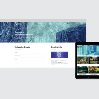 Grafikos dizaineris / Mindaugas Žitkus / Darbų pavyzdys ID 354141