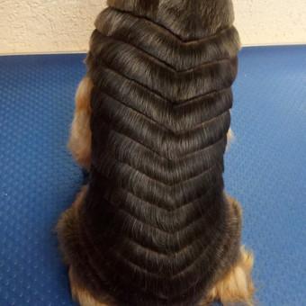 Ritos šuniukų kirpykla / Rita / Darbų pavyzdys ID 361149