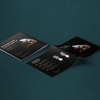 Web ir Grafikos Dizainas / WordPress Svetainės / Artūras Aranin / Totus Studio / Darbų pavyzdys ID 369967