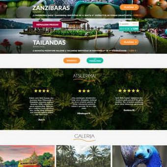 Grafinis dizainas | Maketavimas / Ana Smirnova / Darbų pavyzdys ID 371827