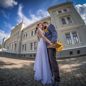 Briedis Girioj - jauki ir magiška fotografija Šiauliuose / Varis Gelžinis / Darbų pavyzdys ID 373655