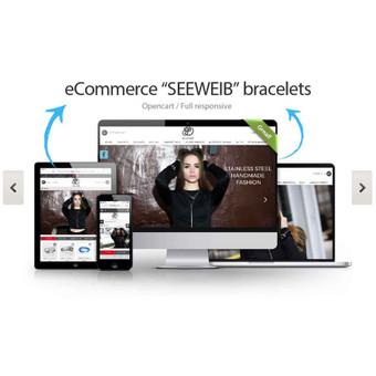 Profesionalios internetinių puslapių kūrimo ir dizaino pasla / Ezernim / Darbų pavyzdys ID 373773