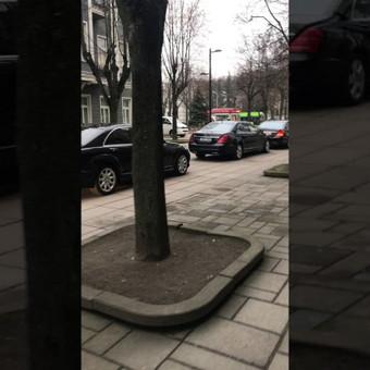 Mercedes limuzinų, mikroautobusų Nuoma vestuvėms, kelionėms. / NUOMAJUMS.LT / Darbų pavyzdys ID 374111