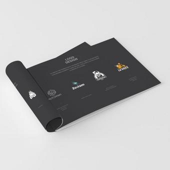 Logotipų, pakuotės ir firminio stiliaus kūrimas / Deividas / Darbų pavyzdys ID 375351