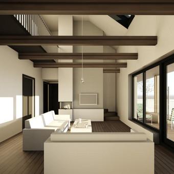 ARK PRO - architektūros ir interjero dizaino studija / Profesionali architektūra / Darbų pavyzdys ID 377325