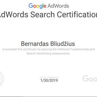 Kuriu efektyviai ir ekonomiškai veikiančias Adwords reklamines kampanijas