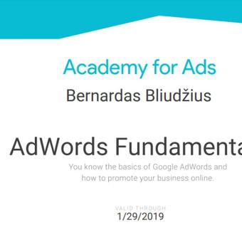 SEO|SEO paslaugos |  SEO optimizacija | Google Adwords / Bernardas Bliudžius / Darbų pavyzdys ID 381925