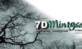 Dailininkė-Dizainerė