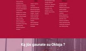 SEO paslaugos Lietuvoje ir užsienyje