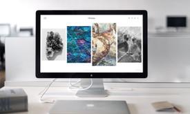 Vitalij Michno. Wordpress svetainių kūrimo kaina nuo 250€