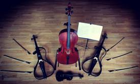Proginiai Styginių instrumentų ansambliai